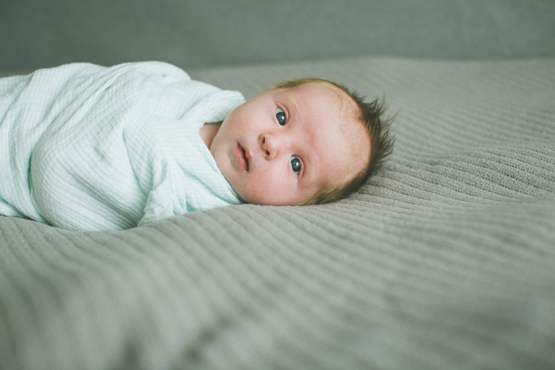 salt lake city utah newborn photographer