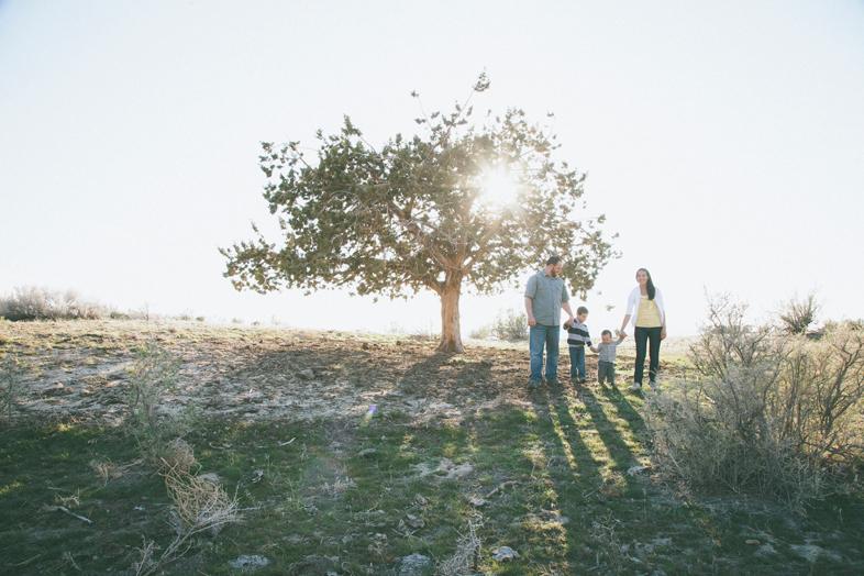 logan utah family photography